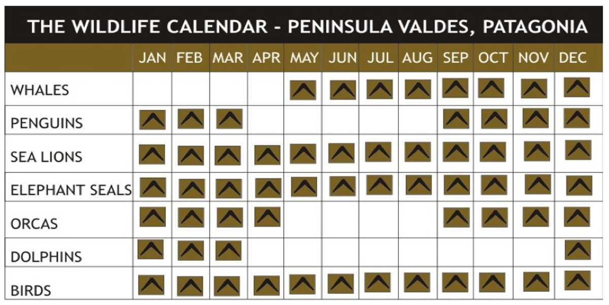 fauna calendar
